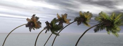 Be Prepared for the 2013 Hurricane Season. . .
